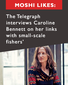 Carolines Telegraph Interview
